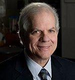 Type-2 Diabetes Linked To Autoimmune Reaction In Study