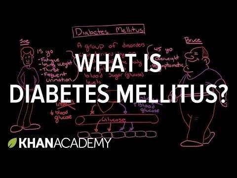 Diabetes Mellitus Meaning