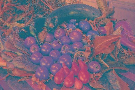 6 Easy Salad Recipes To Help Control Diabetes