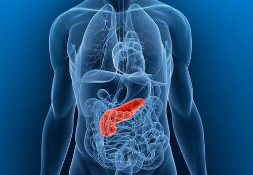 Can Diabetes Cause Pancreatitis And Vice Versa?