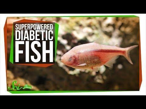Diabetic Sauces For Fish