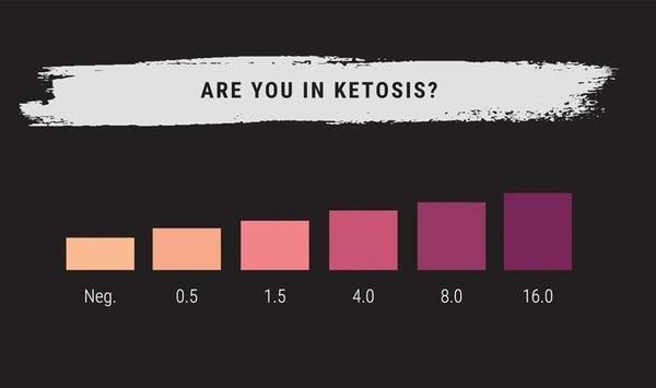 A Guide To Ketone Strips - Learn About Keto Strips Today - Kiss My Keto