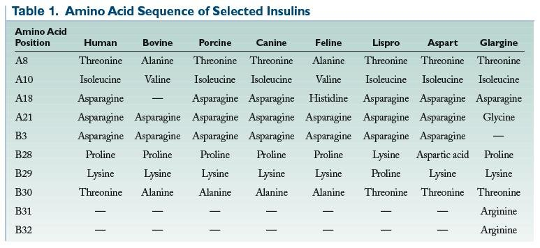 The Evolution Of Insulin Therapy
