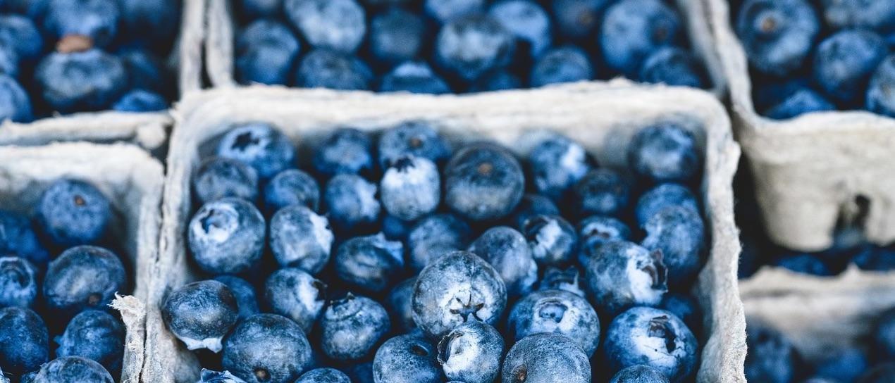 Qu Frutas Puede Comer Un Diabtico