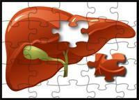 Foods Good For Pancreas And Liver