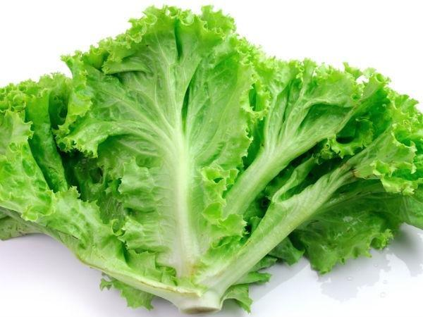 Diabetes Free Vegetables