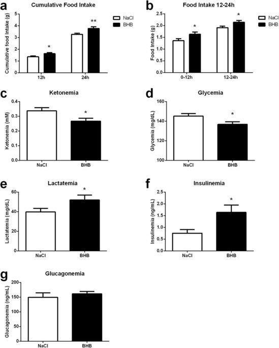 Hypothalamic Sensing Of Ketone Bodies After Prolonged Cerebral Exposure Leads To Metabolic Control Dysregulation