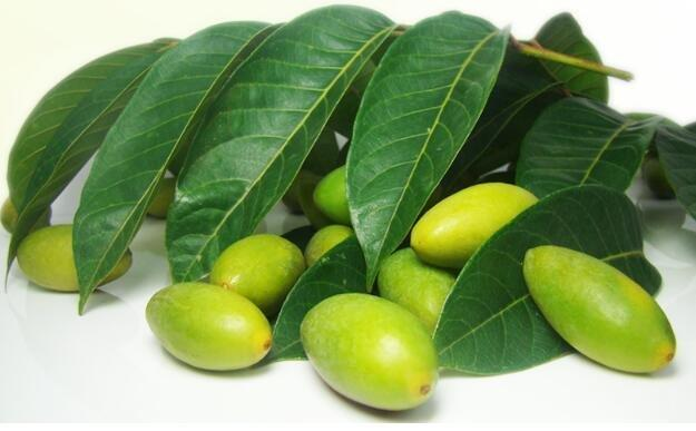 Is Olives Good For Diabetes Patients