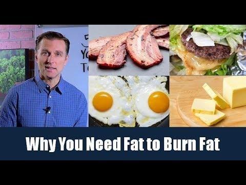 Dietary Fat And Insulin Resistance