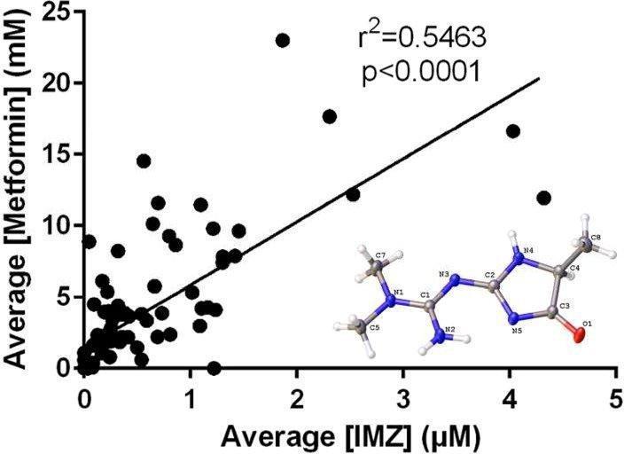 Metformin Scavenges Methylglyoxal To Form A Novel Imidazolinone Metabolite In Humans
