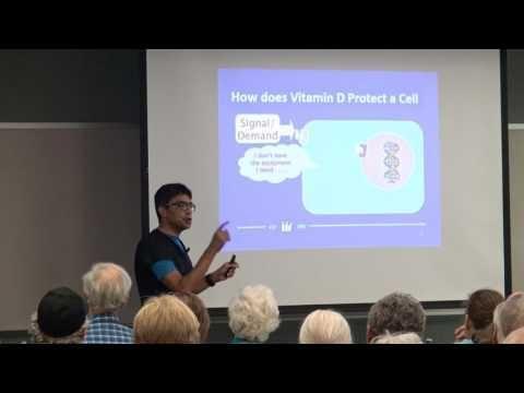High Fat Diet Induced Insulin Resistance