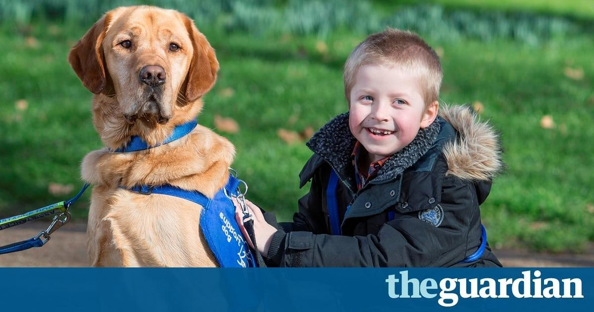 Hounds of love: ​how ​support dogs​ can help with everything from diabetes to autism
