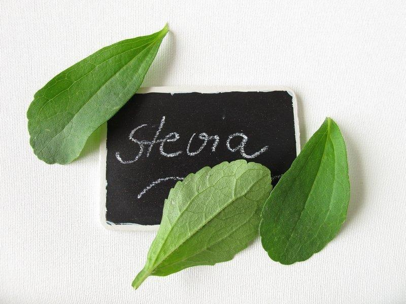 New Insights Reveal How Stevia Controls Blood Sugar Levels