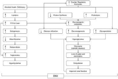 Dka Treatment Guidelines 2017 Ada