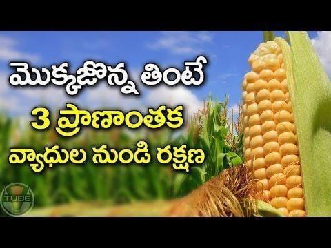 Can A Diabetic Patient Eat Corn Flakes?
