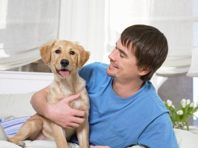 Treating Dog Diabetes Without Insulin