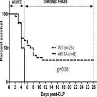 Untreated Type 1 Diabetes Increases Sepsis-induced Mortality Without Inducing A Prelethal Cytokine Response