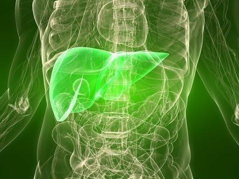 Metformin And Liver Cirrhosis
