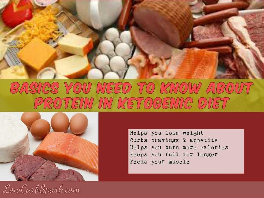 Basics You Need To Know About Protein In Ketogenic Diet & Top 10 High Protein Foods