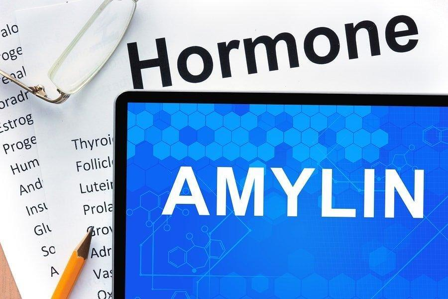 Amylin Type 1 Diabetes