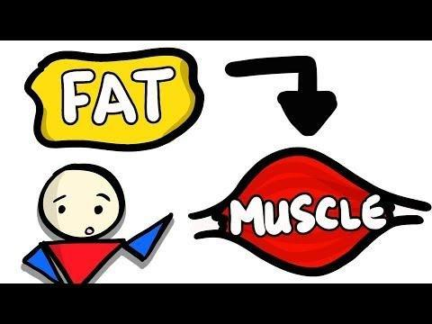 Can Glucose Be Converted To Fat