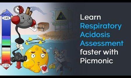 How Do The Kidneys Compensate Respiratory Acidosis Quizlet
