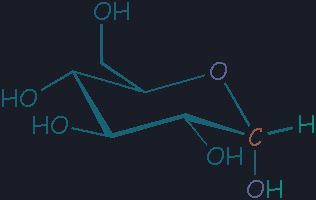 Where Is Glucose Found In A Plant