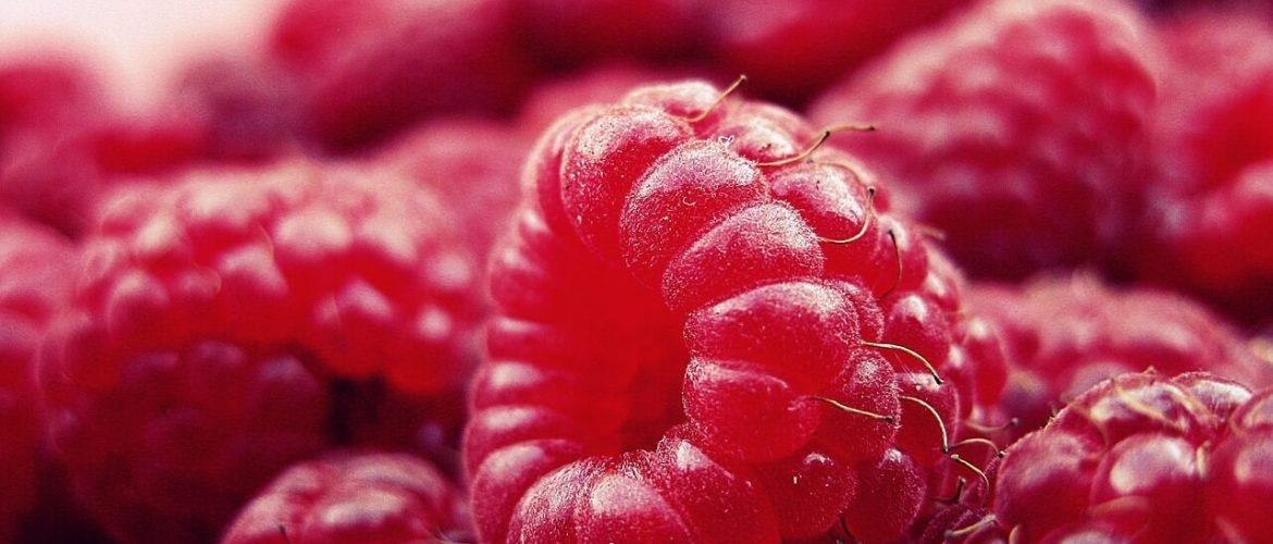Raspberry Ketones For Weight Loss