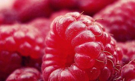 Are Raspberry Ketones Safe To Take?