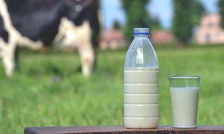 Diabetes Milk