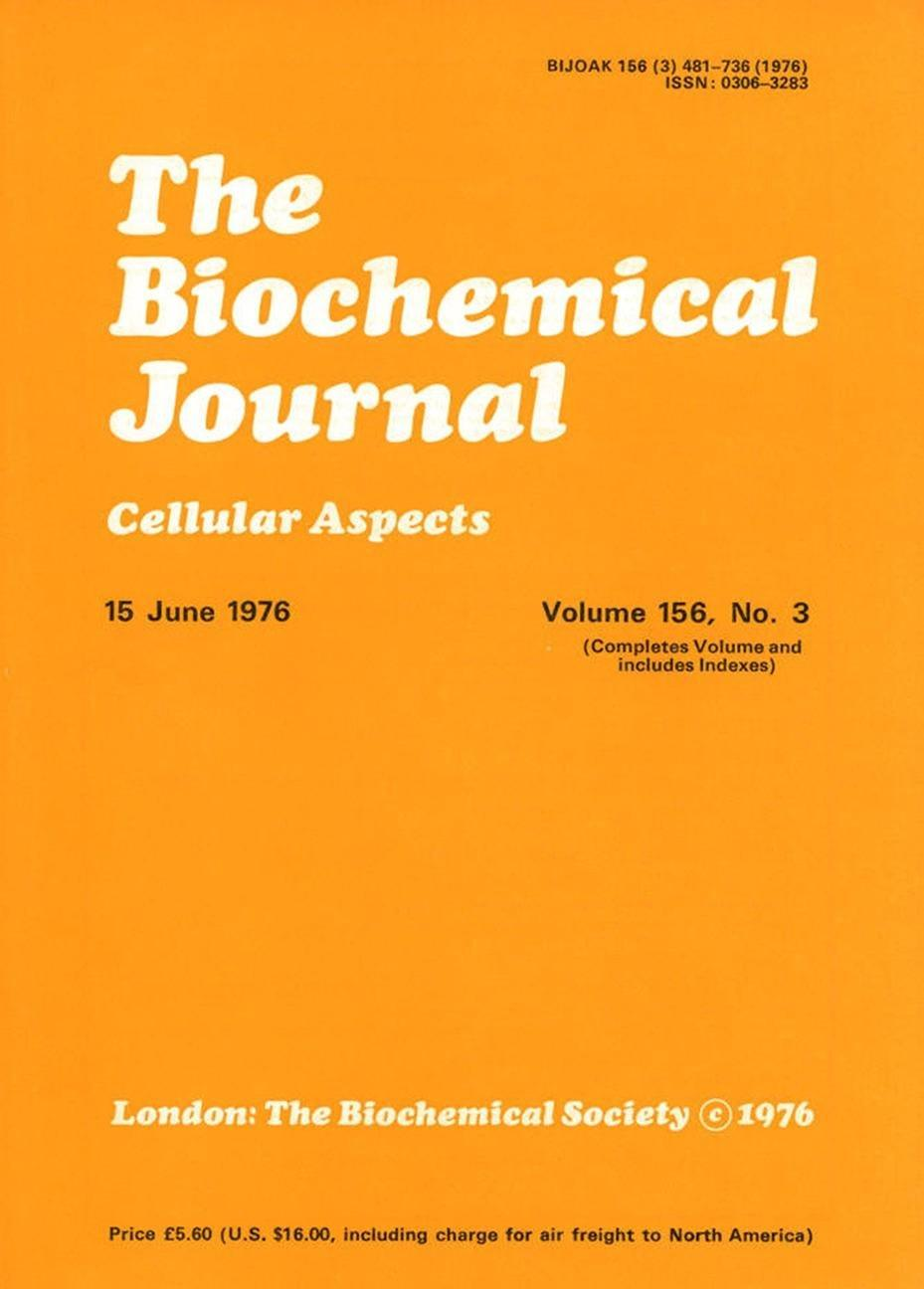 Lipogenesis From Ketone Bodies In Rat Brain. Evidence For Conversion Of Acetoacetate Into Acetyl-coenzyme A In The Cytosol