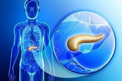 Pancreas Strengthening Foods
