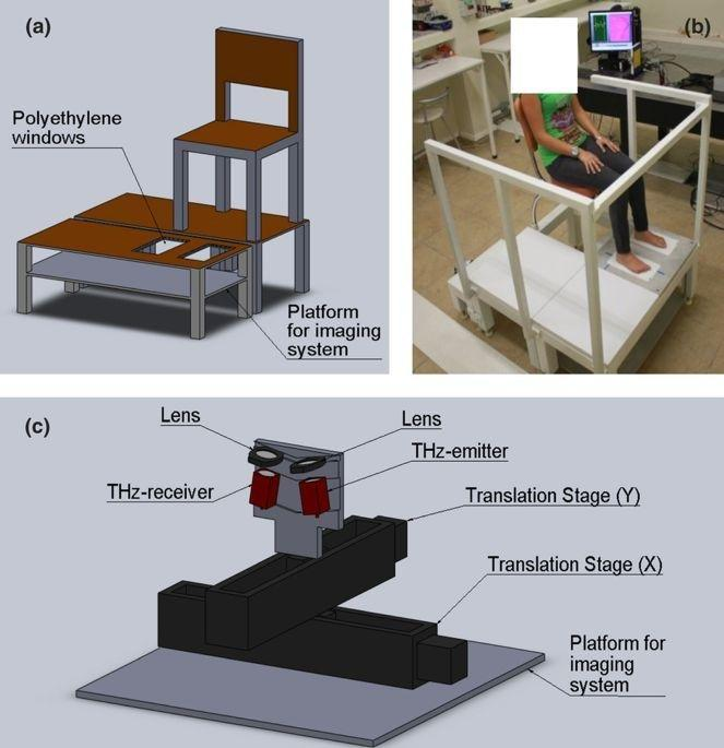 Terahertz Imaging For Early Screening Of Diabetic Foot Syndrome: A Proof Of Concept