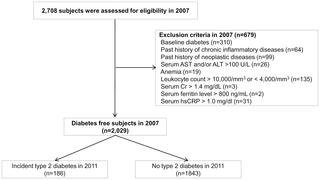 Elevated Serum Ferritin Level Is Associated With The Incident Type 2 Diabetes In Healthy Korean Men: A 4 Year Longitudinal Study