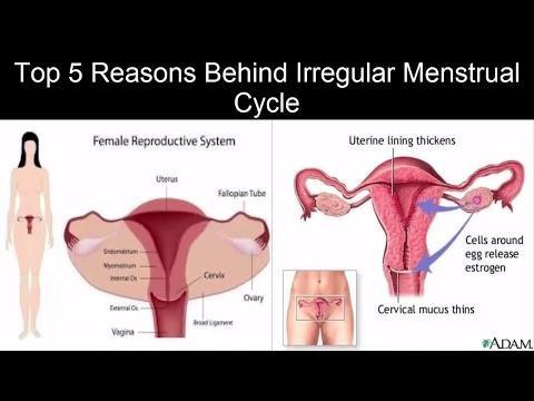 Metformin And Menstrual Delays