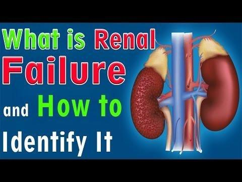 Why Does Renal Failure Cause Metabolic Acidosis