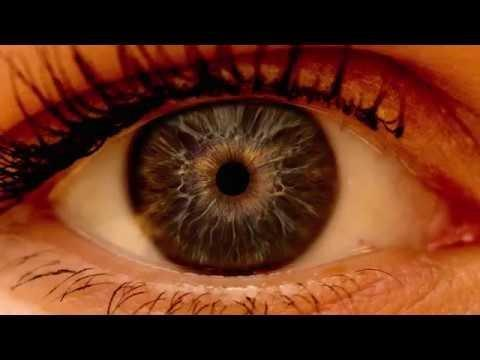 Diabetic Eye Exam Vs Regular Eye Exam