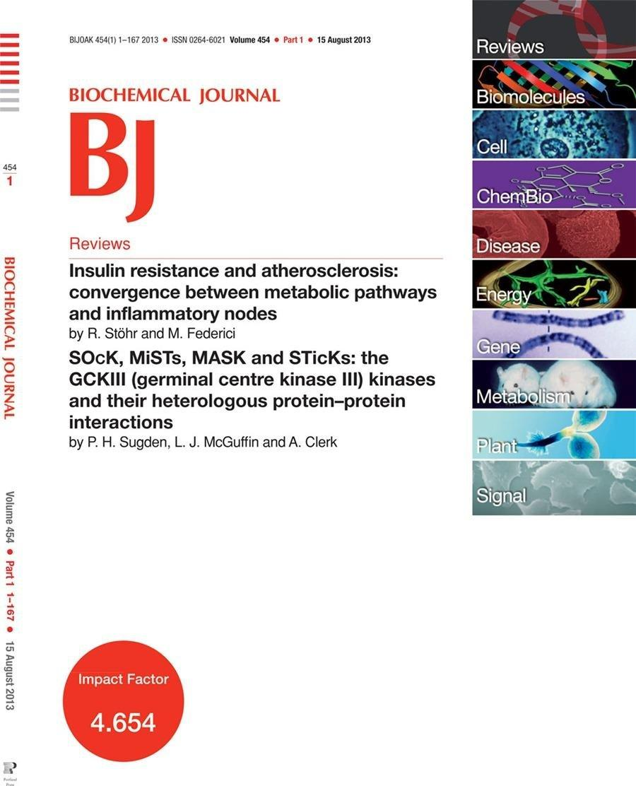 Insulin Resistance And Atherosclerosis: Convergence Between Metabolic Pathways And Inflammatory Nodes