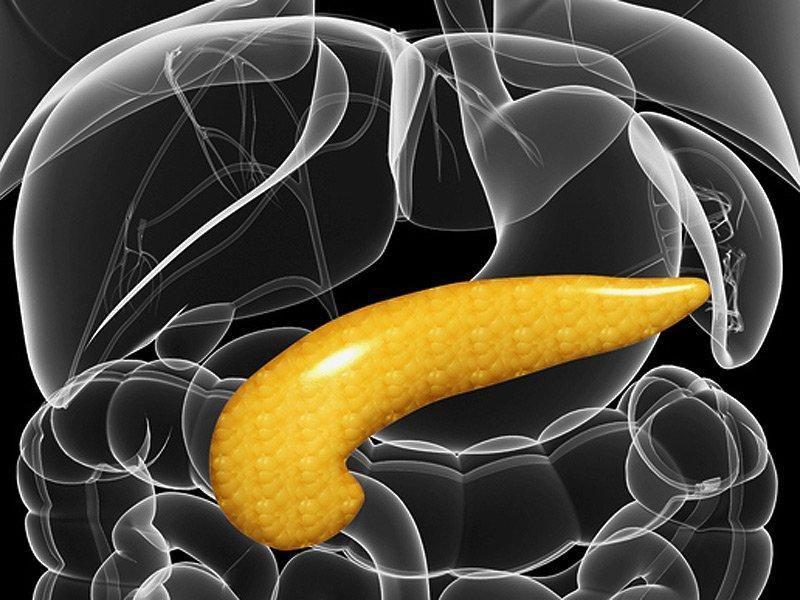 Can Beta Cells Regenerate In Type 2 Diabetes