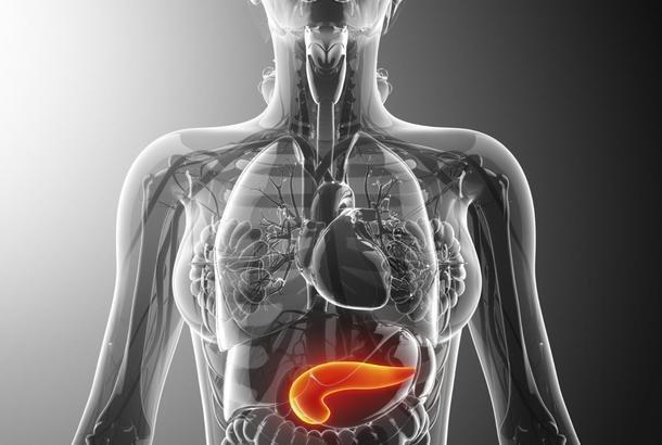 Is Diabetes An Endocrine Disorder