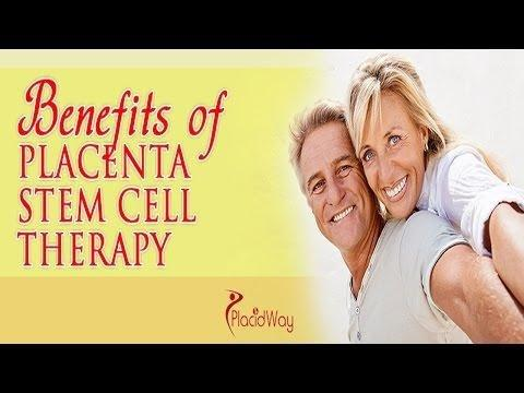 Stem Cell Therapy For Diabetes Type 2 Cost