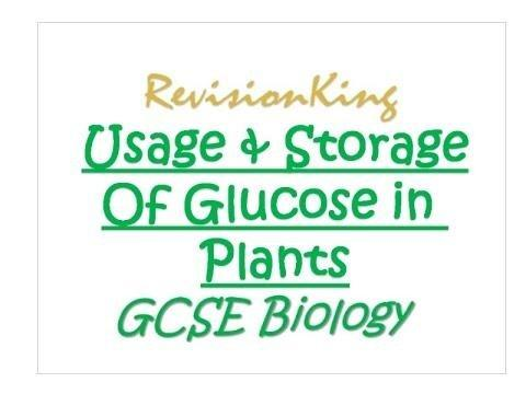 What Is The Storage Form Of Glucose In Plants?