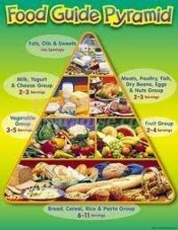 Eating According To The Food Guide Pyramid