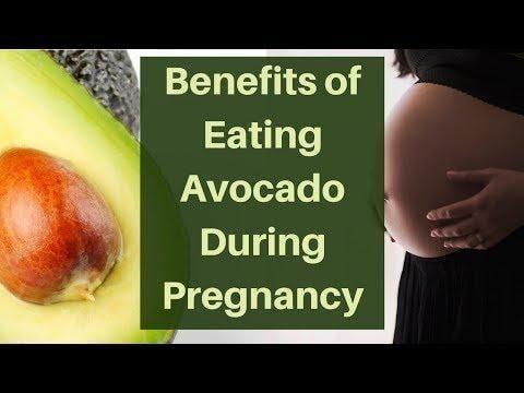 My 8 Favorite Ketogenic Avocado Recipes