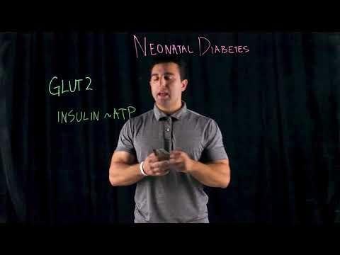 Transient Neonatal Hyperinsulinism