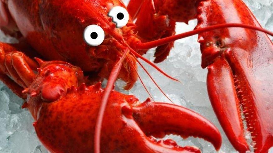 The Truth About Shrimp, Salmon, Lobster, Crab And More