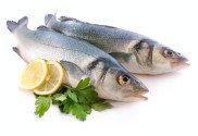 Hilsa Fish For Diabetics