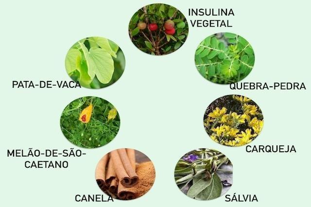 8 Remedios Caseros Para Bajar La Glucosa - Tua Sade