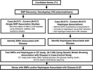 Candidate Gene Association Study In Type 2 Diabetes Indicates A Role For Genes Involved In Β-cell Function As Well As Insulin Action