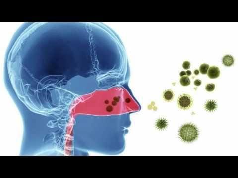Drug Interactions Between Claritin And Metformin